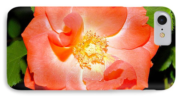 Orange Rose  Phone Case by Ester  Rogers