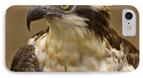 Osprey Portrait Phone Case by Anne Rodkin