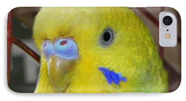 Parakeet Inside Cage Phone Case by Arindam Raha