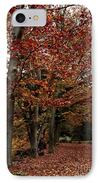Path Of Leaves Phone Case by John Rizzuto