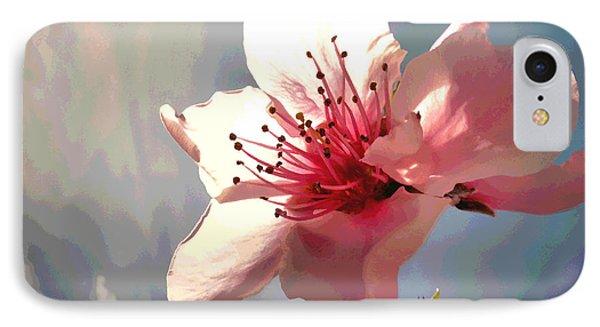 Peach Blossom Macro 2 IPhone Case by Joyce Dickens