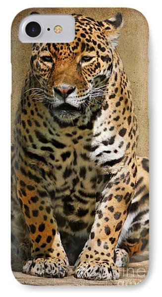 Pensive Phone Case by Lois Bryan