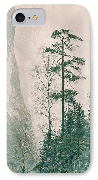 Pinus Sylvestris IPhone Case by Gabriela Insuratelu