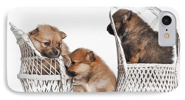 Pomeranian 3 Phone Case by Everet Regal