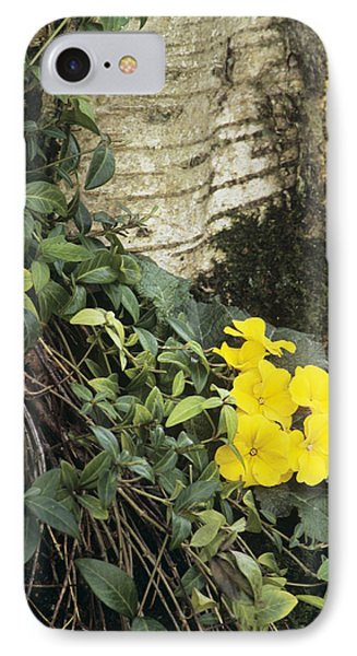 Primula 'wanda' And Vinca Minor Phone Case by Archie Young