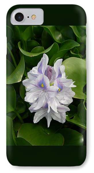 Rare Hawain Water Lilly IPhone Case by Claude McCoy