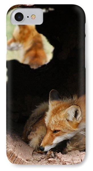 Red Fox Dreaming Phone Case by Ernie Echols