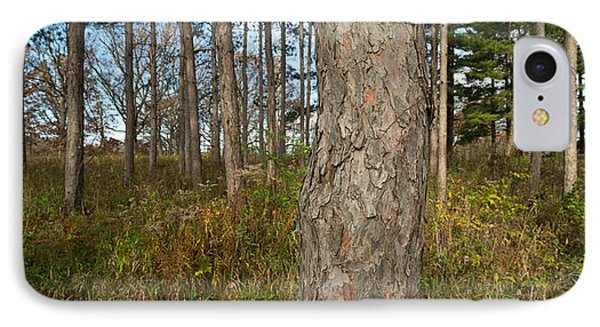 Red Pine Forest IPhone Case by Steve Gadomski