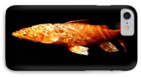Reflected Ripples IPhone Case by Don Mann