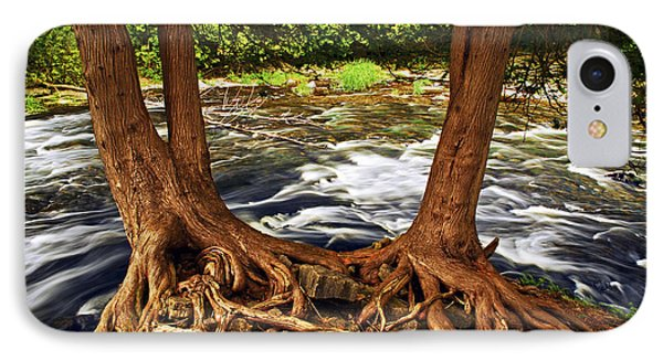 River And Roots IPhone Case by Elena Elisseeva