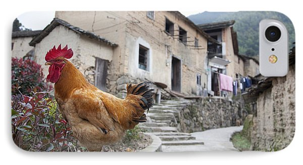 Rooster On A Roadside Wall Phone Case by Shannon Fagan