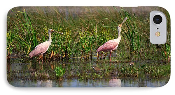 Roseate Spoonbills IPhone Case by Louise Heusinkveld