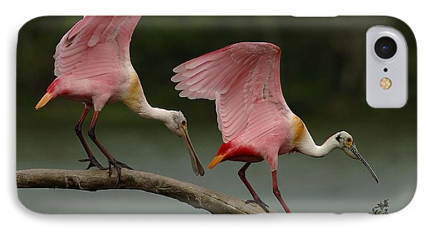 Rosiette Spoonbills IPhone Case by Bob Christopher