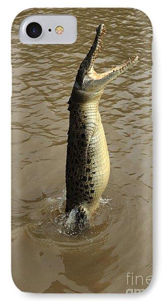 Salt Water Crocodile IPhone Case by Bob Christopher