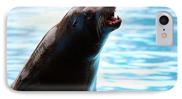 Sea-lion IPhone Case by Carlos Caetano