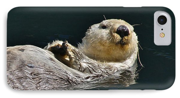 Sea Otter Phone Case by Sean Griffin