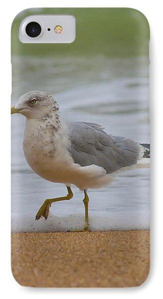 Seagull Stomp Phone Case by Betsy Knapp