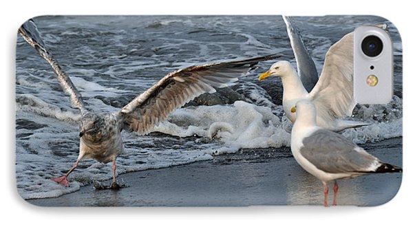 Seagull Treasures Phone Case by Debra  Miller