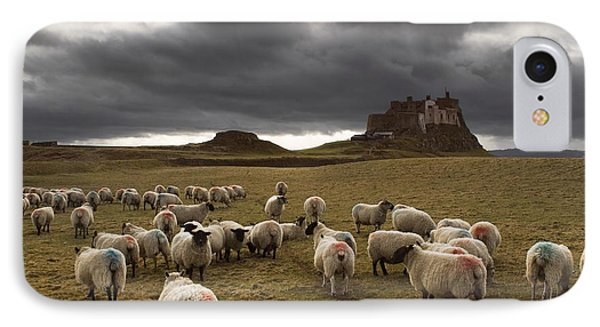 Sheep Grazing By Lindisfarne Castle Phone Case by John Short