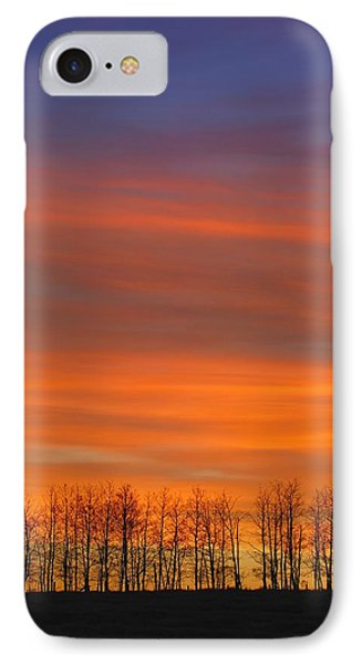 Silhouette Of Trees Against Sunset Phone Case by Don Hammond