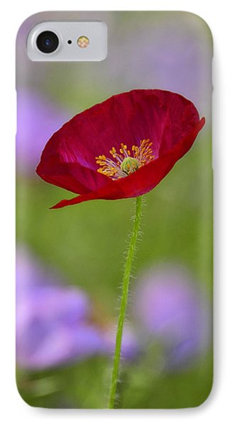 Single Red Poppy  Phone Case by Saija  Lehtonen