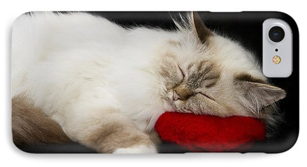 Sleeping Birman IPhone Case by Melanie Viola