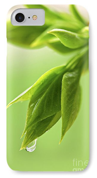 Spring Green Leaves IPhone Case by Elena Elisseeva