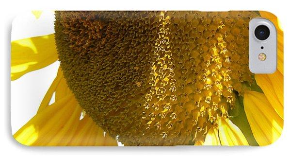 Sunflower Love  Phone Case by Pamela Patch