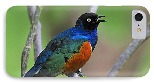 Superb Starling IPhone 7 Case by Tony Beck