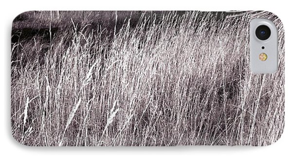 Tall Grasses Phone Case by Will Borden