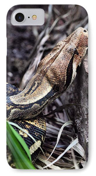 The Boa IPhone Case by JC Findley