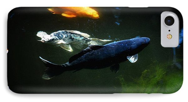 The Koi Jungle IPhone Case by Don Mann