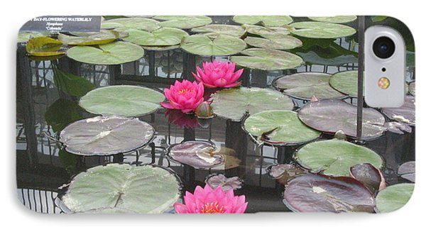 Three Pink Water Lilies Phone Case by Portia Petty