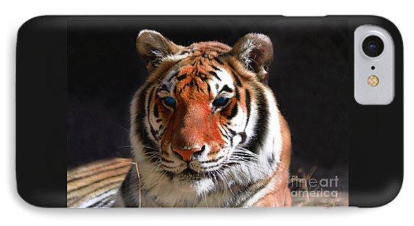 Tiger Blue Eyes IPhone Case by Rebecca Margraf