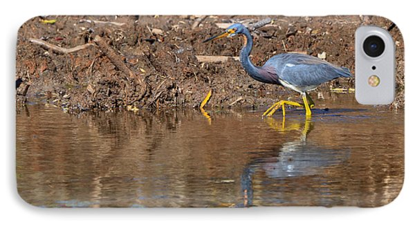 Tricolored Heron In The Winter Marsh Phone Case by Louise Heusinkveld