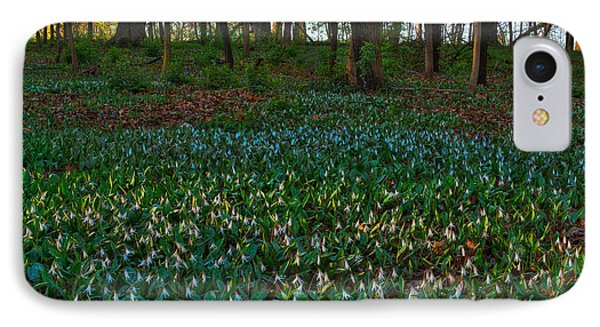 Trout Lilies On Forest Floor IPhone Case by Steve Gadomski