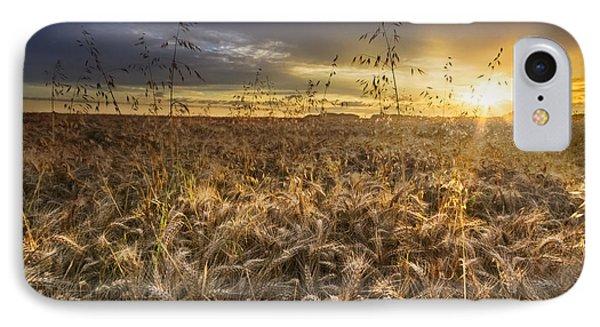 Tumble Wheat Phone Case by Debra and Dave Vanderlaan