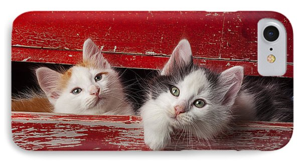 Two Kittens In Red Drawer Phone Case by Garry Gay