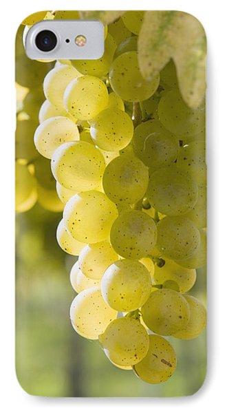 White Grapes Phone Case by Michael Interisano