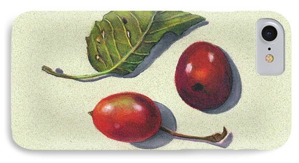 Wild Plums And Leaf Phone Case by Joyce Geleynse