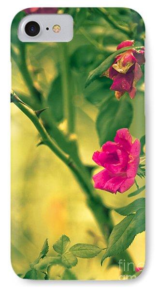Yesterday In The Garden Phone Case by Kim Henderson