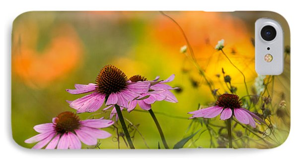 Coneflower Symphony IPhone Case by Mary Amerman