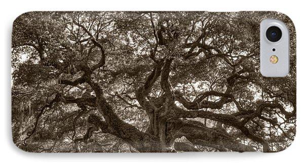Angel Oak Live Oak Tree Phone Case by Dustin K Ryan