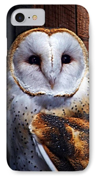 Barn Owl  Phone Case by Anthony Jones