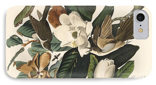 Black-billed Cuckoo IPhone Case by John James Audubon