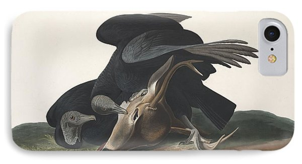 Black Vulture IPhone Case by John James Audubon
