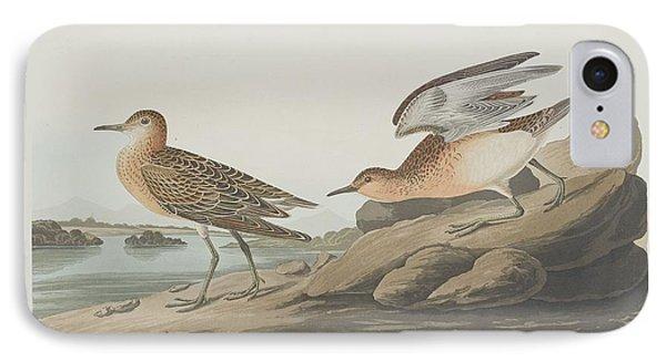 Buff-breasted Sandpiper IPhone 7 Case by John James Audubon