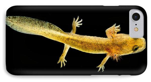 California Giant Salamander Larva IPhone 7 Case by Dant� Fenolio