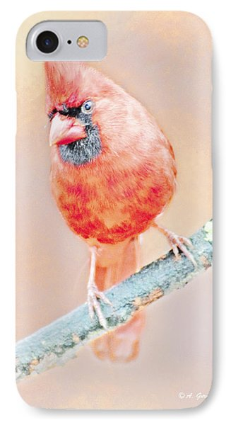 IPhone Case featuring the photograph Cardinal Male by A Gurmankin