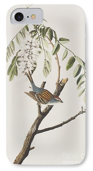 Chipping Sparrow IPhone Case by John James Audubon